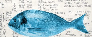 FISH Modell - strategisches Content Marketing