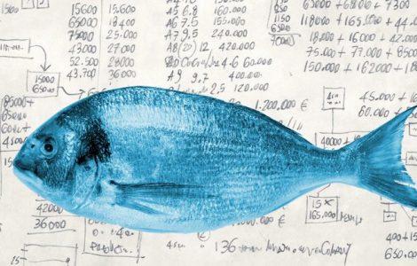 FISH Modell - strategisches Content Marketing